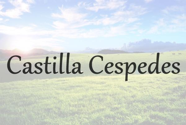 Mª del Carmen Castilla Cespedes